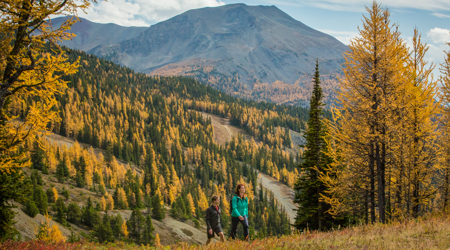 Top 10 Things to Do in Banff this Fall