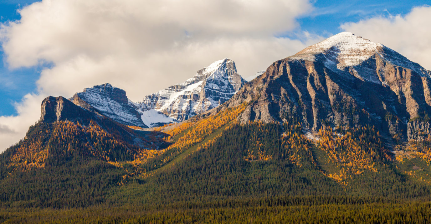 The Best Larch Hikes in Alberta